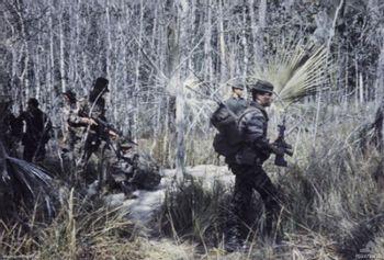 https://mediaproxy.tvtropes.org/width/350/https://static.tvtropes.org/pmwiki/pub/images/Australian_SAS_patrol_Operation_Coburg_SVN_1968_(AWM_P01979010).jpg