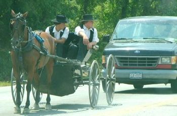 https://mediaproxy.tvtropes.org/width/350/https://static.tvtropes.org/pmwiki/pub/images/amish_buggy_and_van_498.jpg