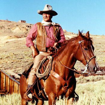 https://mediaproxy.tvtropes.org/width/350/https://static.tvtropes.org/pmwiki/pub/images/john_wayne_cowboy_poster.jpg