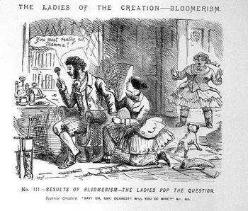 https://mediaproxy.tvtropes.org/width/350/https://static.tvtropes.org/pmwiki/pub/images/ladies-of-creation-bloomerism-3_9759.jpg