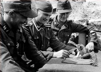 https://mediaproxy.tvtropes.org/width/350/https://static.tvtropes.org/pmwiki/pub/images/nazis_with_kittens_5152.jpg