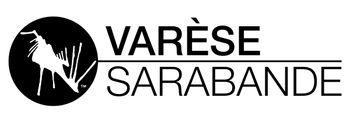 https://mediaproxy.tvtropes.org/width/350/https://static.tvtropes.org/pmwiki/pub/images/varse_sarabande_logo.jpg